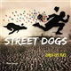 STREET DOGS CHIENS DES RUES